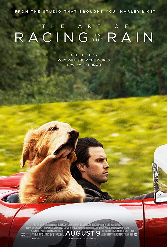 download the art of racing in the rain hollywood movie