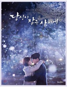 Read more about the article While You Were Sleeping | Korean Drama