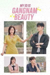 download my gangam beauty korean drama