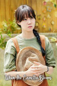 When the Camellia Blooms (Complete) | Korean Drama