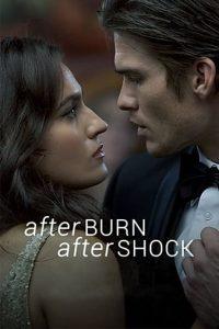 Afterburn Aftershock (2017) | Download Hollywood Movie