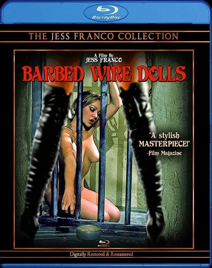 Read more about the article Barbed Wire Dolls (1976) | Download Hollywood Movie